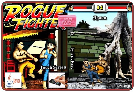 Rogue Fighter / Уличные разборки